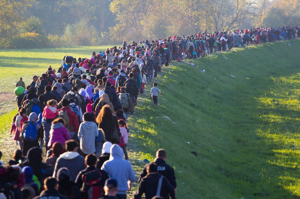 Several thousand refugees are wandering into the direction of Deutscland Dramatical picture from European refugees crisis see my collection from refugees 25.10.2015 Slovenia Breznice