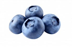 Blueberry. Fresh berries isolated on white background