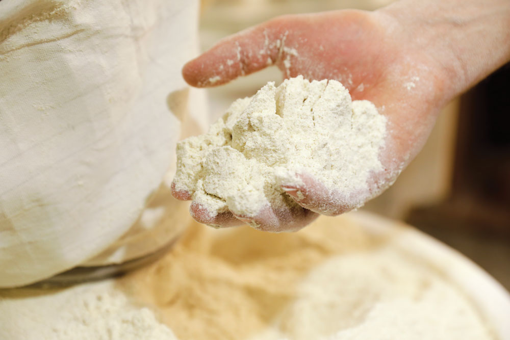 hand full of flour