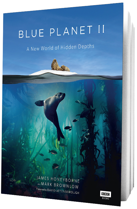 Book Blue Planet II on transparent background