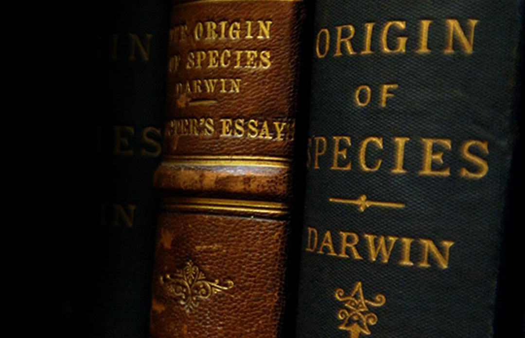 Rachel Perkins, the library collections manager at the Natural History Museum, holds a copy of Charles Darwin's book, 'The Origin of the Species, by means of Natural Selection', signed by Darwin to his friend Bernhard Tegetmeier.