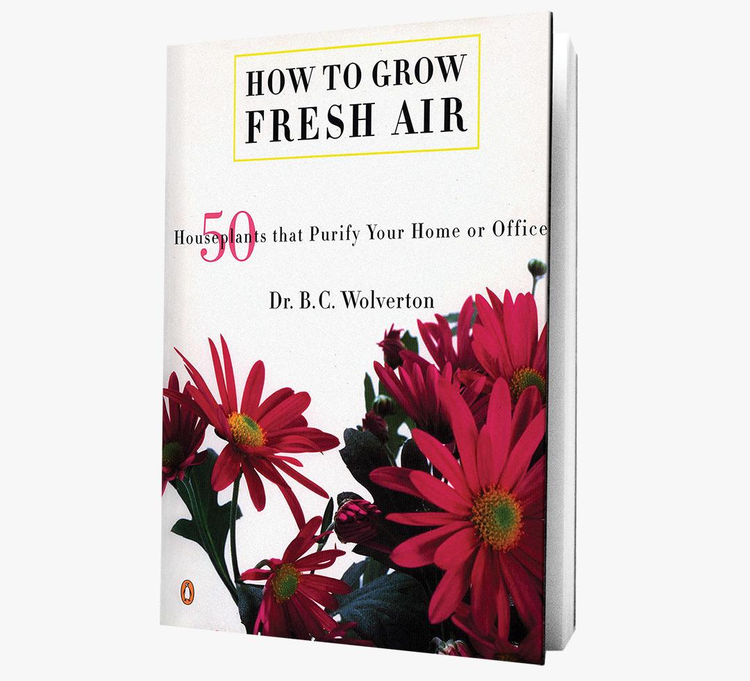How To grow Fresh Air book