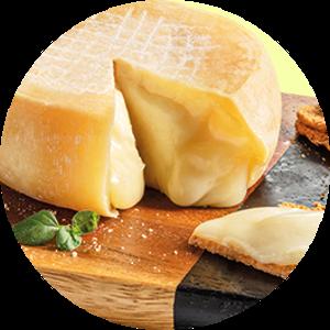 Azeitão Cheese close up