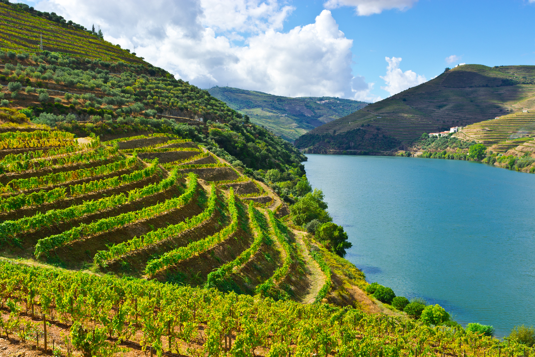 Douro Valey